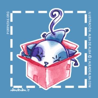 ilustración-macotas-home-gato-cuadrado (2)